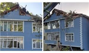 Tarihi çınar ağacı binanın üzerine devrildi