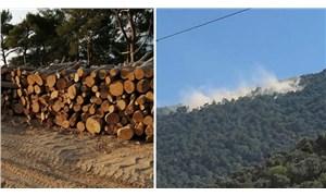 Ilbıra Dağı ekosistemi madene feda edilemez!