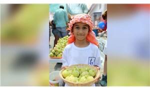 İzmir'de incir zamanı: Güzelbahçe ve Torbalı'da festival düzenlenecek