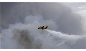 Yunanistan'ın Eğriboz Adası'nda orman yangını devam ediyor