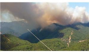 İzmir'de bir yangın da Urla'da: Çevre illerden takviye istendi