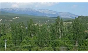 Murat Dağı'nda kritik keşif