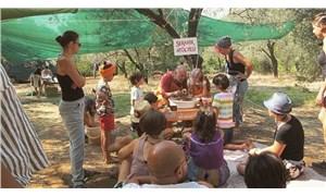 Ekofest başlıyor: Bu yılın teması 'gıda'
