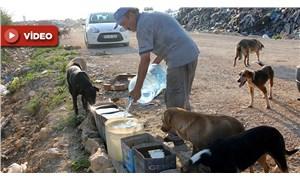 11 yıldır her sabah sokak hayvanlarına su taşıyor