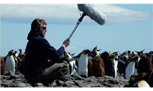 Doğadaki sesleri kaydeden müzisyen ayı saldırısında hayatını kaybetti