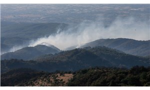 CHP'den Pakdemirli'ye yangın tepkisi: Ya hesap verin, ya istifa edin