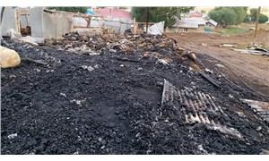 Ahırda çıkan yangında 120 hayvan yaşamını yitirdi