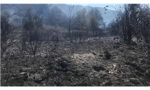 Beydağ'da makilik yangını