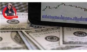 Dolar tedirginliği