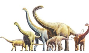 Fas'ta dinozor kemikleri bulundu