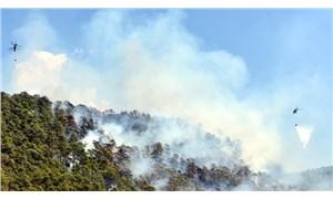 Marmaris'te 5 hektar kızılçam ormanı yandı