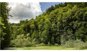 'Milli parklar satılacak' iddiası