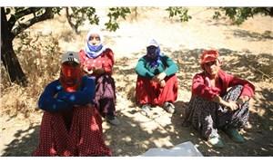 Tarım işçisi kadınlar tepkili: Erkeklerle aynı işi yapıyoruz aynı ücreti alamıyoruz!