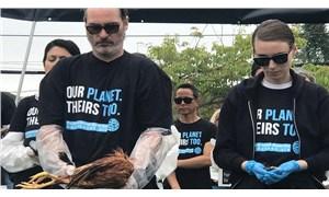 Hollywood veganlaşıyor: Öncüler tarihe yazılacak
