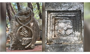 5 antik kentin 5 endemik bitkisi, koruma altına alınacak