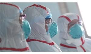 Eski DSÖ çalışanlarından uyarı: 80 milyon kişiyi öldürebilir