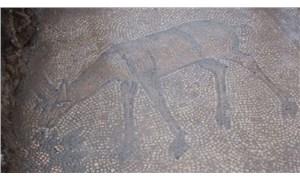 Kaçak kazı yapan defineciler 1500 yıllık mozaik buldu