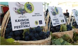 Kavacık, Üzüm Festivali'ne hazır