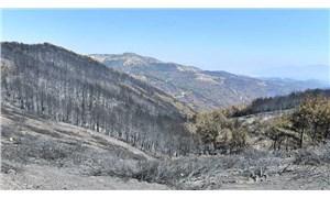 İzmir Büyükşehir Belediyesi'ne yangınlarla ilgili bağış toplama izni verildi