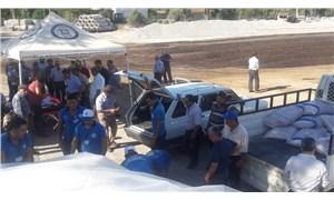 Muğla Büyükşehir'den hayvancılığa yem bitkisi desteği