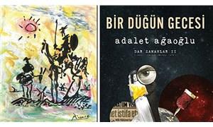Kriz halleri ve Türkçede roman