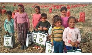 Tarım işçisi çocuklar okullarına dönemedi