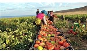 'Sağlıklı gıdaya erişim hakkı ayaklar altında'