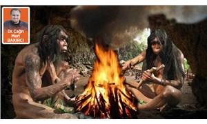 Ateşin kontrolü insanın evrimine nasıl yön verdi?