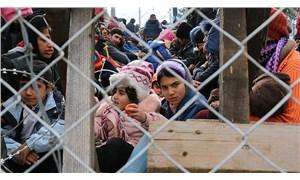 Avrupa Konseyi: Yunanistan'daki mülteciler felaketin eşiğinde
