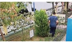 İzmir'de kedi yavrusunu tekmeleyerek öldüren kişi yakalandı