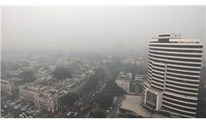 Hint bakandan hava kirliliğine karşı tepki çeken çözüm önerisi: Havuç yiyin