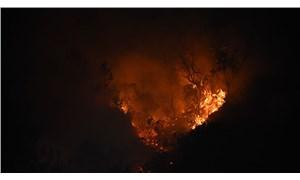 Bartın'da orman yangını nedeniyle 7 ev tahliye edildi