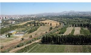 Atatürk Orman Çiftliği zarar etti