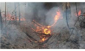 Avustralya'da orman yangınları sürüyor: 85 yangından 46'sı kontrol altına alınamadı