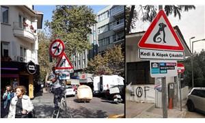 Beşiktaş'ta 'kedi ve köpek çıkabilir' tabelaları