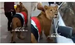 Polis müdahaleye köpekle gelince eylemciler aslan getirdi