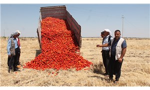 Tarım kredilerinde kırmızı alarm