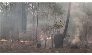 Avustralya'da orman yangınları devam ediyor: Üç eyalette daha alarm verildi