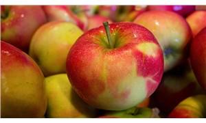 1 yıl bozulmayan elma satışa sunuldu