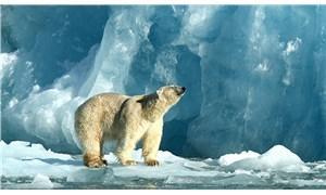 Dünya için en büyük tehdit: İklim krizi