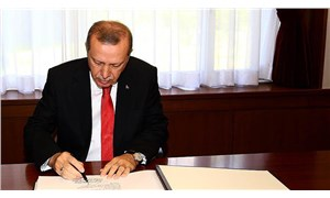 Erdoğan'a yeni başdanışman