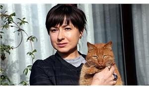 Tekirdağ'da evin bahçesinde yaşayan kedileri zehirlediler