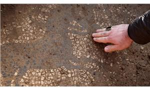 2 bin yıllık mozaiği satmaya çalıştılar