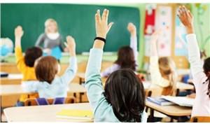 Teşviklerle artan özel okullar alarm veriyor