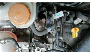 Motor kaputuna sıkışan kediyi itfaiye kurtardı