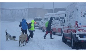 Uludağ'da kaybolan 2 dağcıyı arama çalışmaları 12'nci günde de sürüyor
