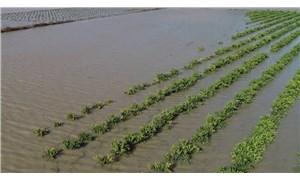 İktidar sel mağduru çiftçiyle dalga geçiyor