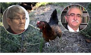 """Tavuk eti tartışması büyüyor: """"Gezen tavukta risk daha büyük"""""""