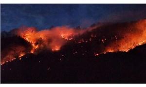 Karadeniz'de 69 noktada yangın: Sabotaj ihtimali araştırılıyor
