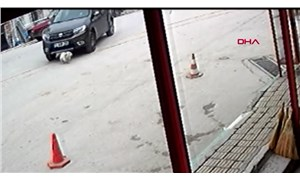 Otomobili kasten üzerine sürdüğü köpeği ezdi, 'fark etmedim' dedi!